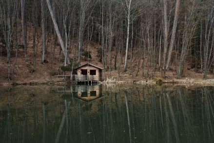 House. Dirt, Lake, Woods.